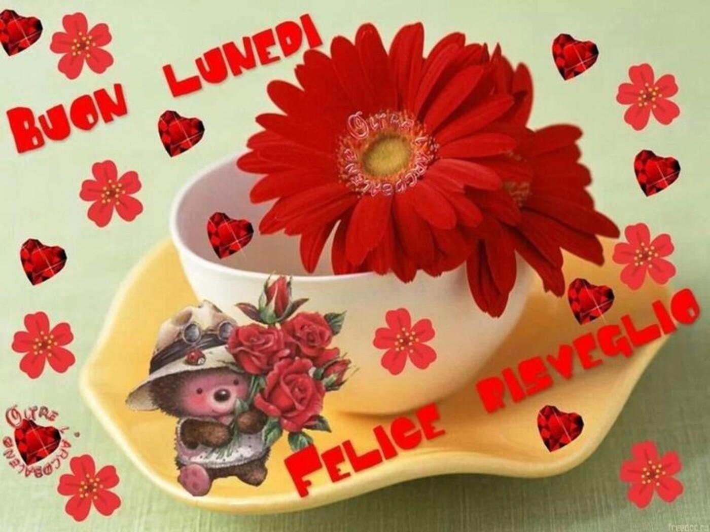 Buon Lunedì Felice Risveglio Amore