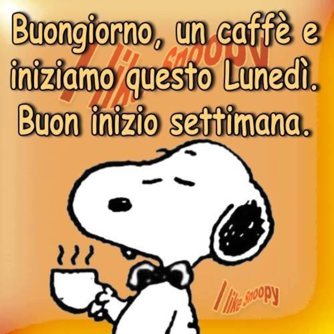 Buongiorno, un caffè e iniziamo questo lunedì. Buon inizio settimana. Snoopy