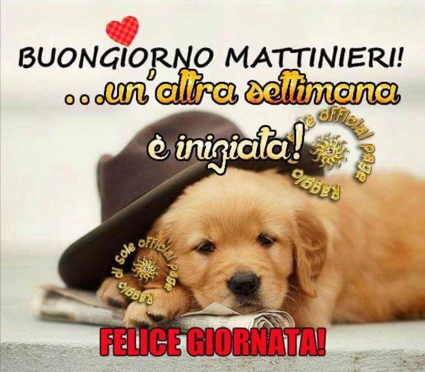 """""""Buongiorno Mattinieri! Un'altra settimana è iniziata....."""""""