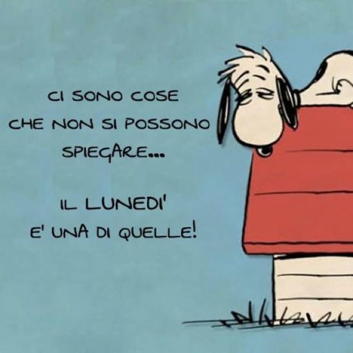 Buon Lunedì divertente Snoopy