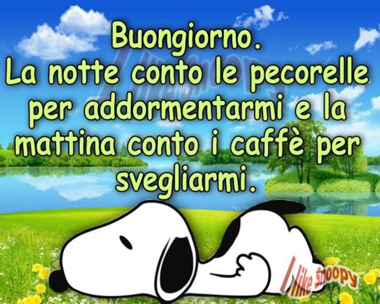 Buongiorno. La notte conto le pecorelle per addormentarmi e la mattina conto i caffè per svegliarmi. (Snoopy)