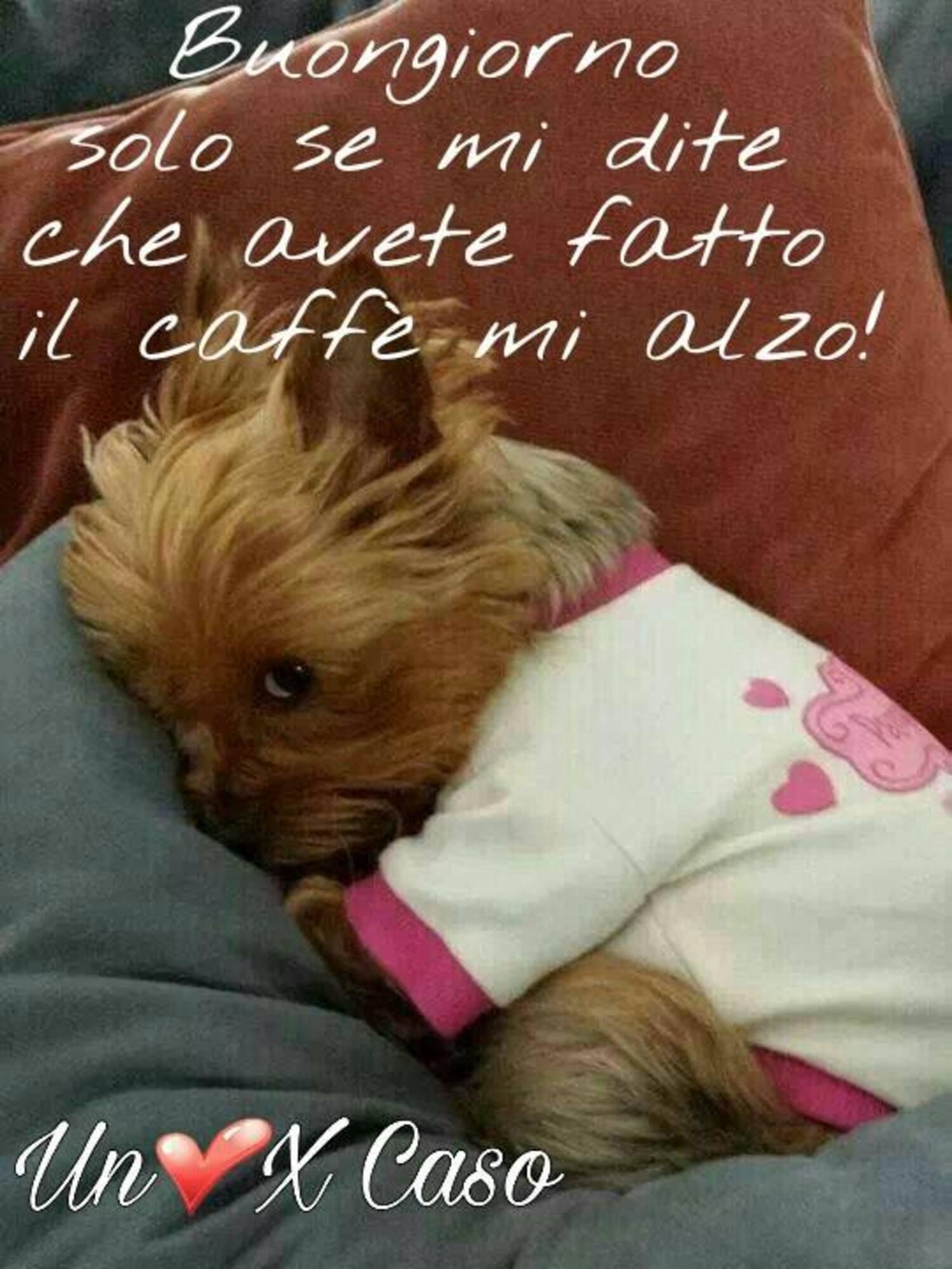 Buongiorno solo se mi dite che avete fatto il caffè mi alzo!