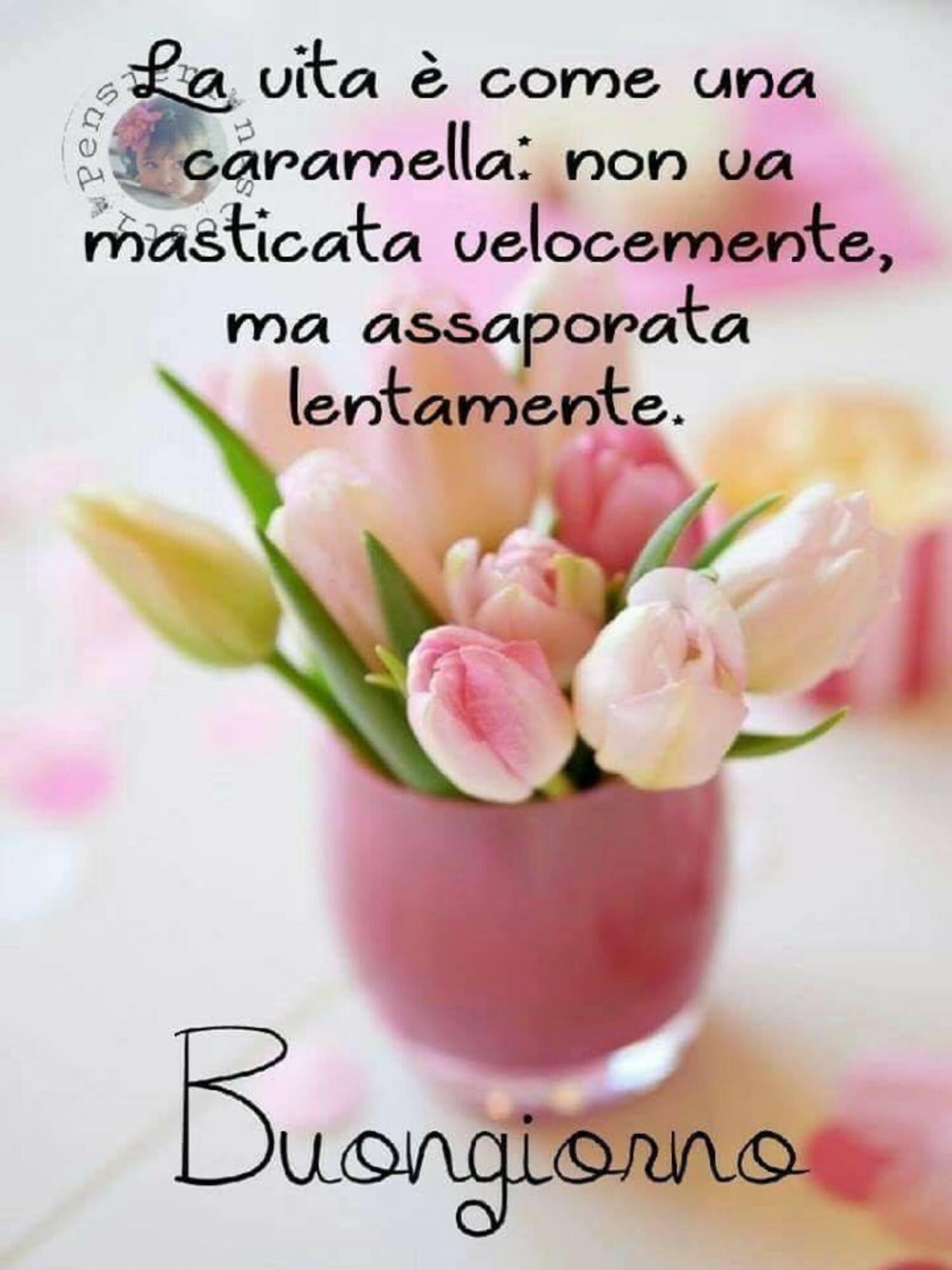 La vita è come una caramella, non va masticata velocemente ma assaporata lentamente. Buongiorno