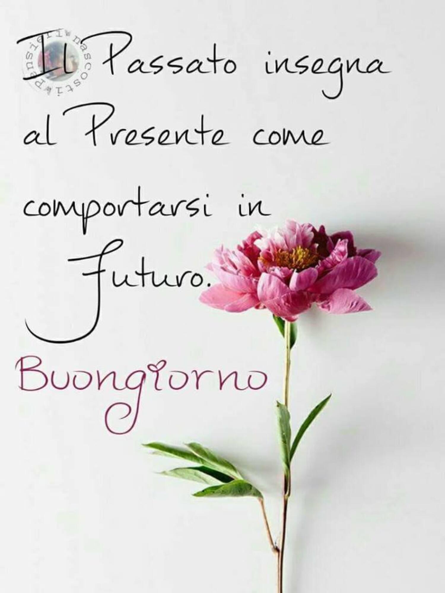 Il passato insegna al presente come comportarsi in futuro. Buongiorno