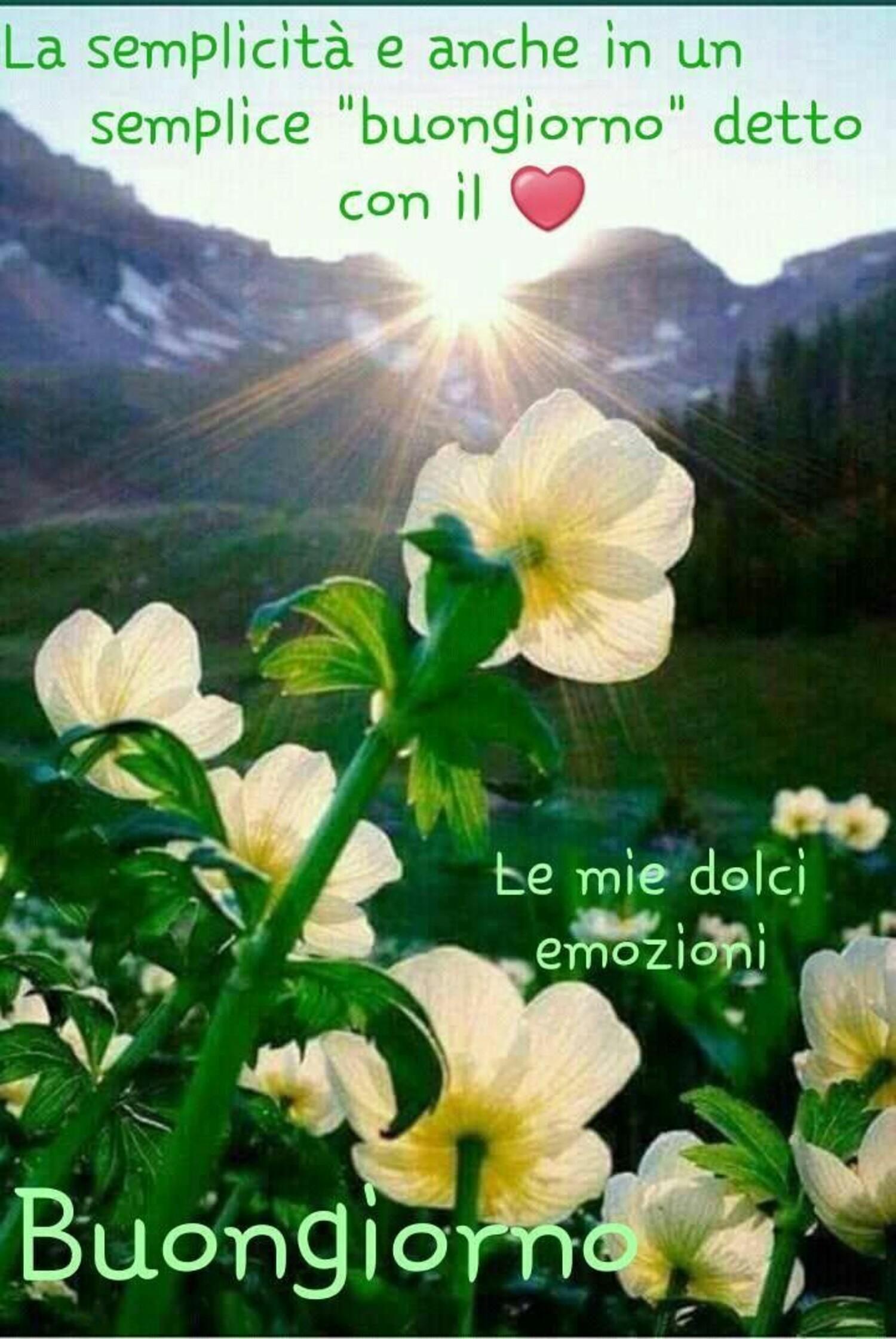 La semplicità è anche in un semplice Buongiorno detto con il cuore... Buongiorno