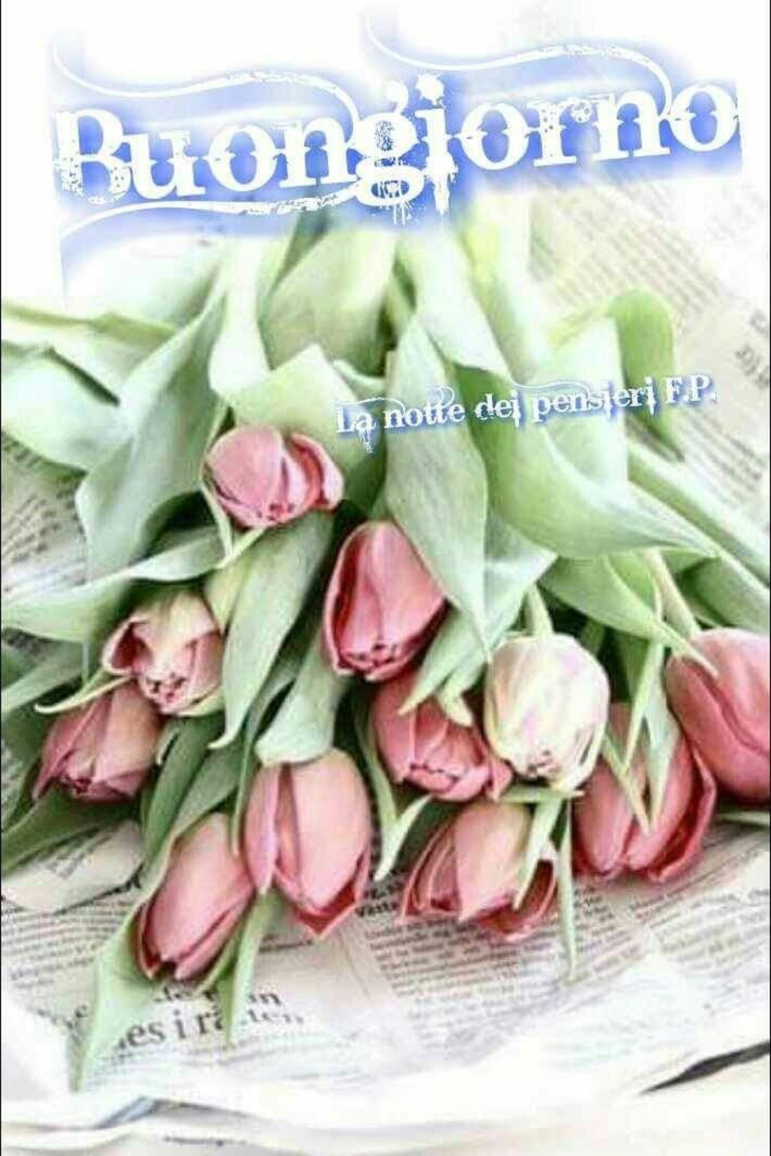Buongiorno con i tulipani