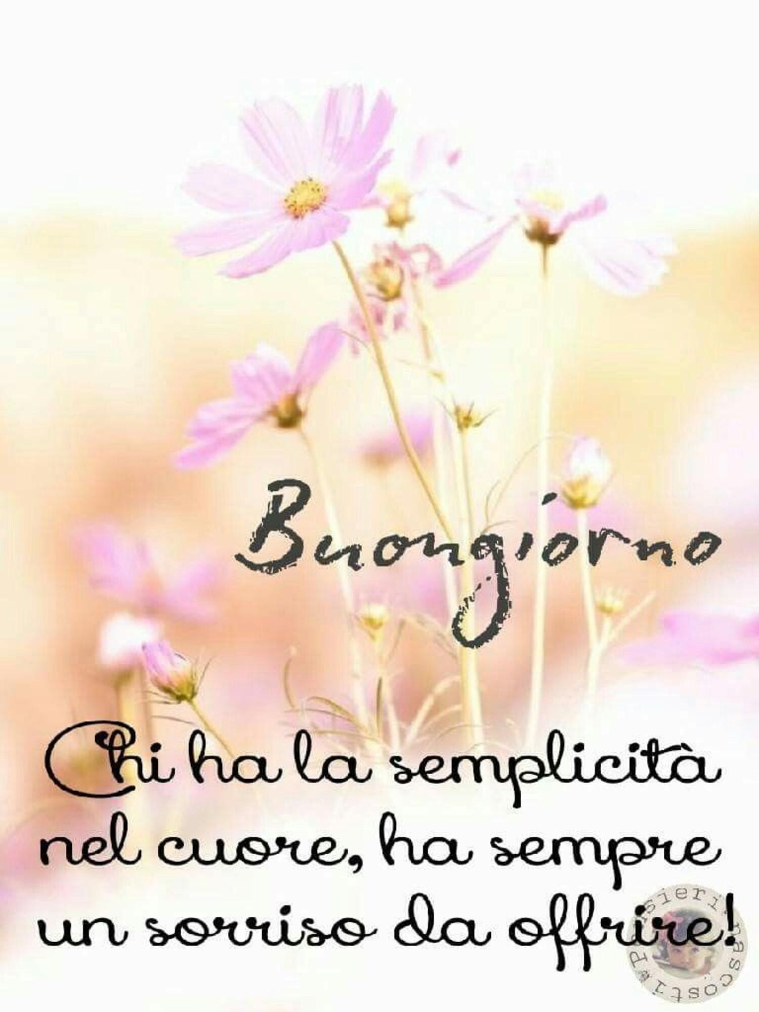 Buongiorno, chi ha la semplicità nel cuore, ha sempre un sorriso da offrire!