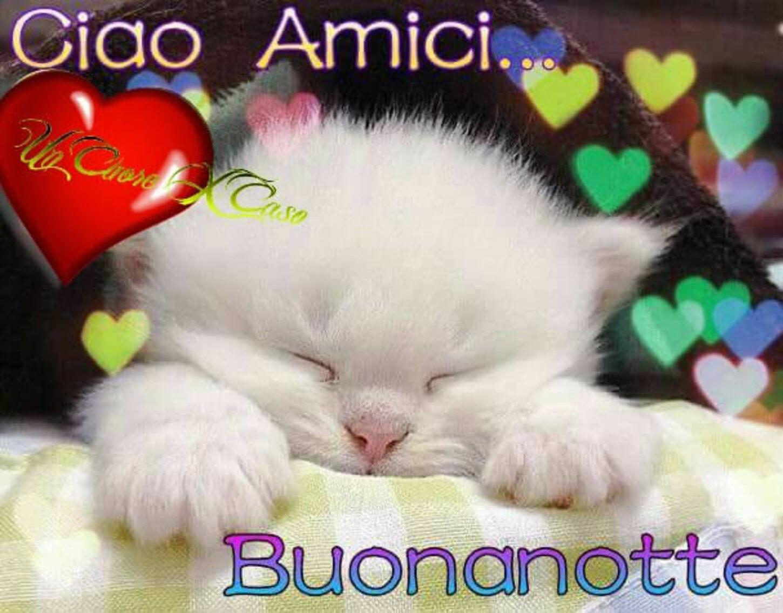 Ciao amici... Buonanotte