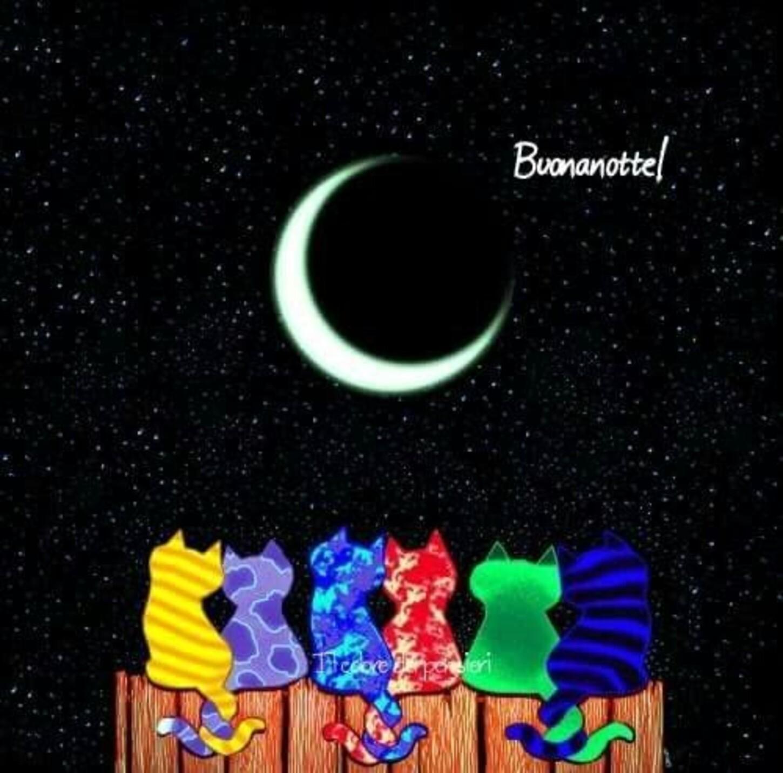 Buonanotte! gatti che guardano la luna