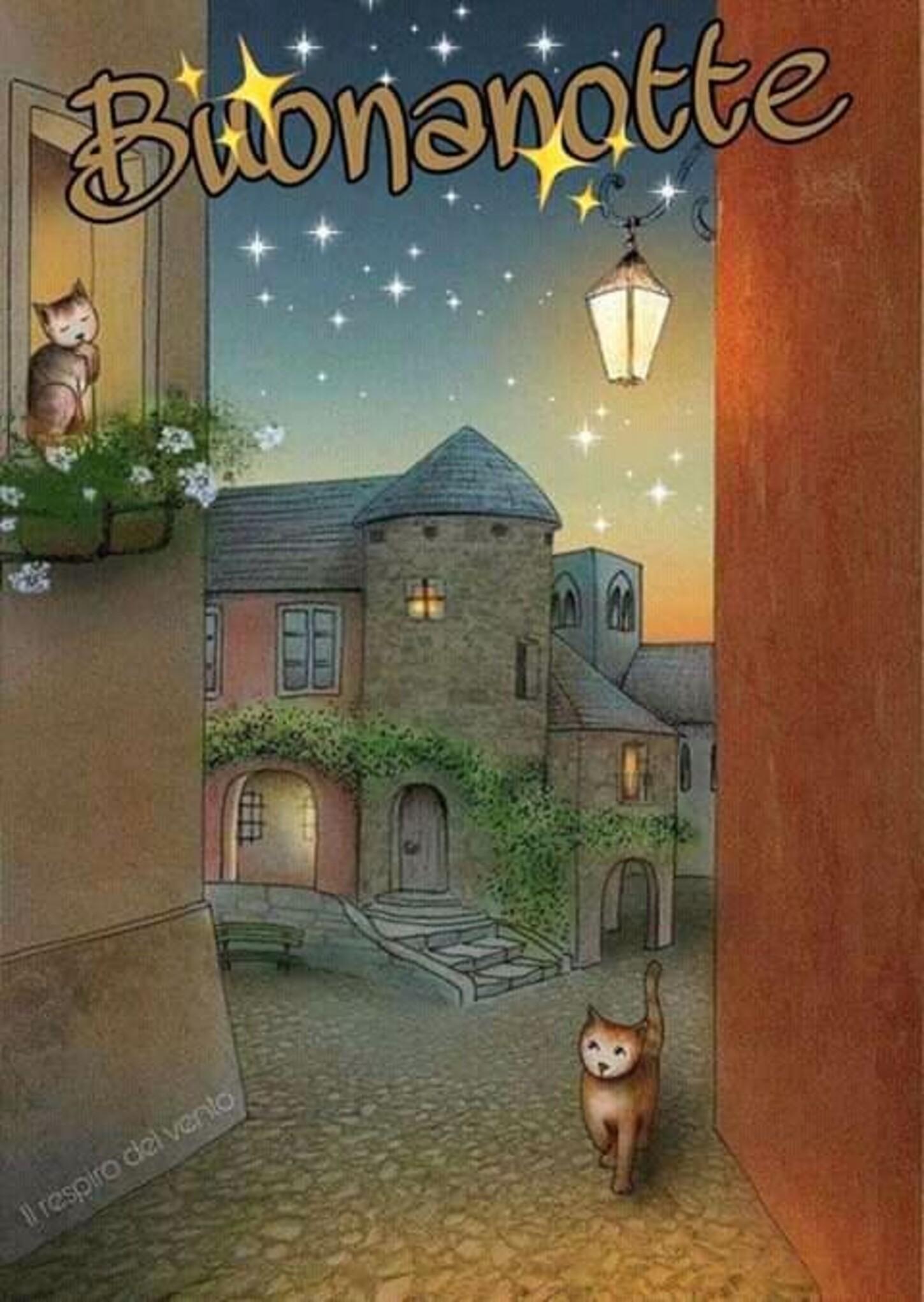 Belle immagini per Buonanotte