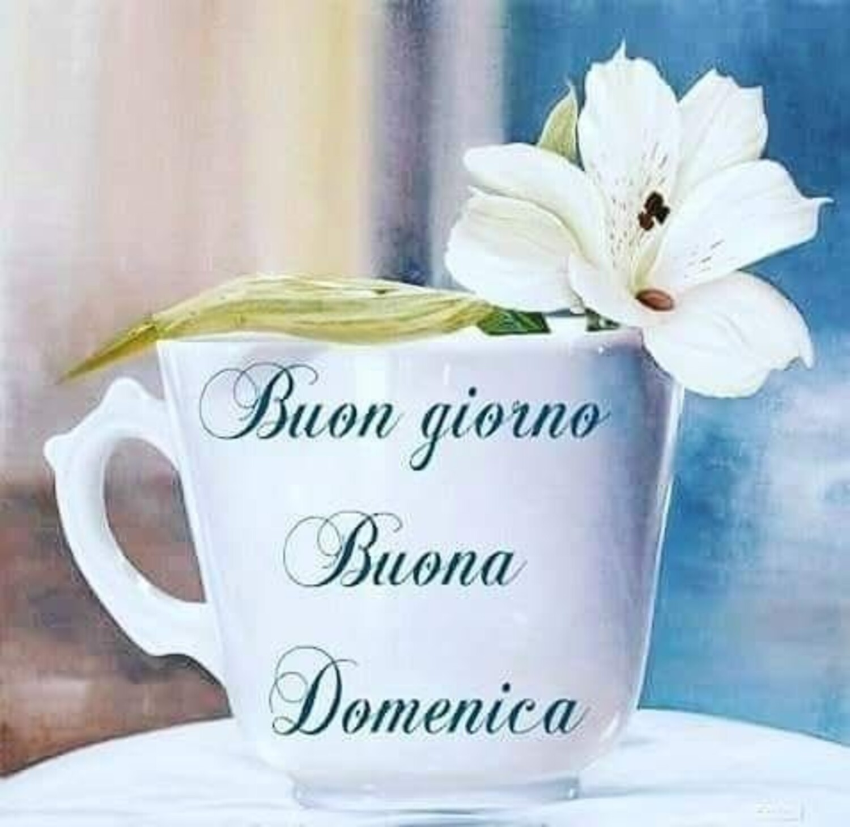 Buongiorno Buona Domenica