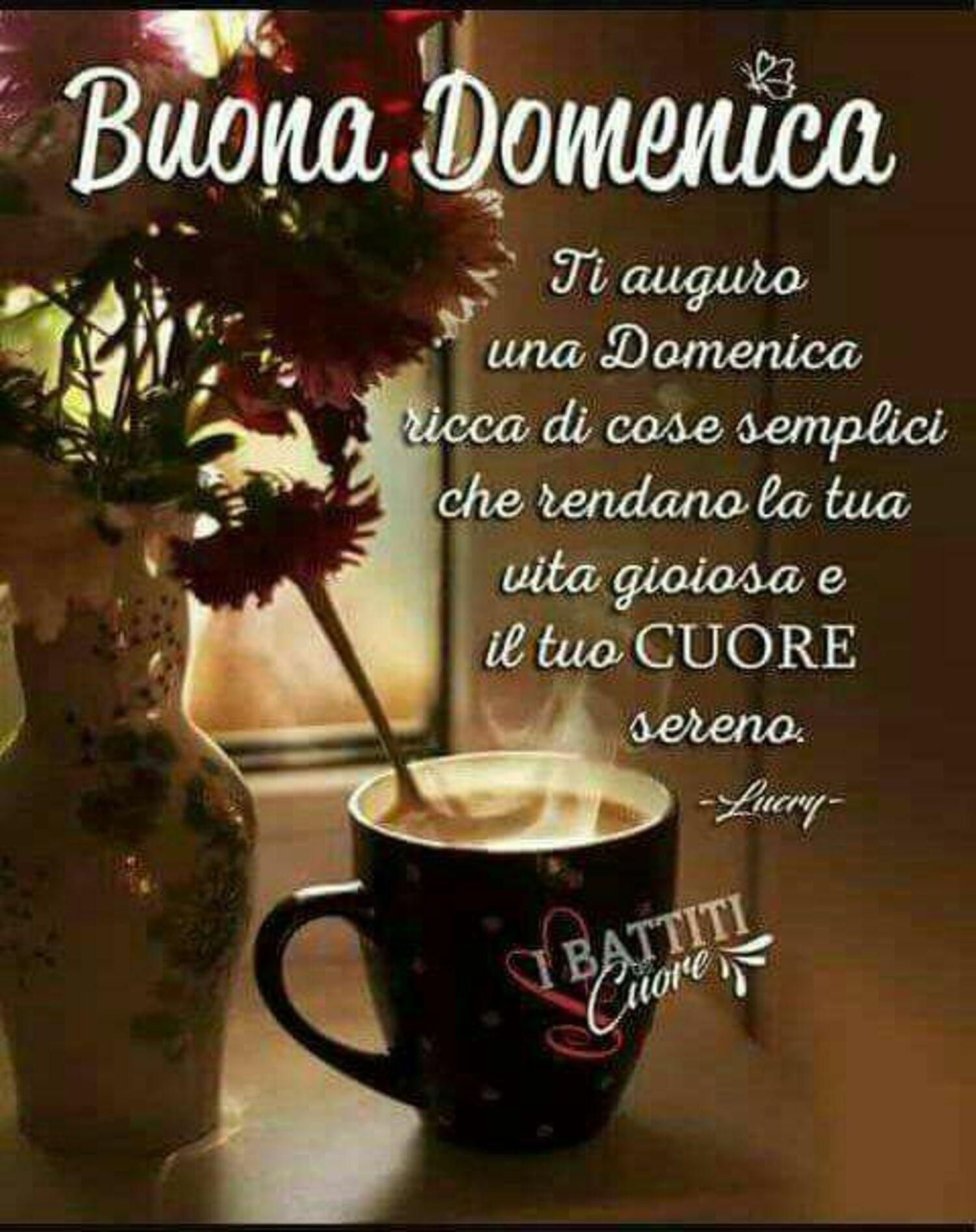 Buona Domenica ti auguro una Domenica ricca di cose semplici che rendono la tua vita gioiosa e il tuo cuore sereno
