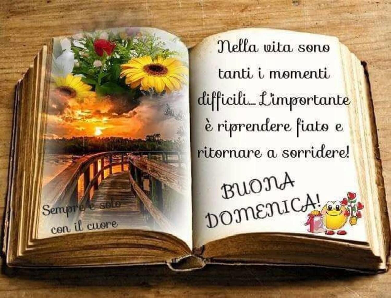 Nella vita sono tanti i momenti difficili...L'importante è riprendere fiato e ritornare a sorridere...Buona Domenica