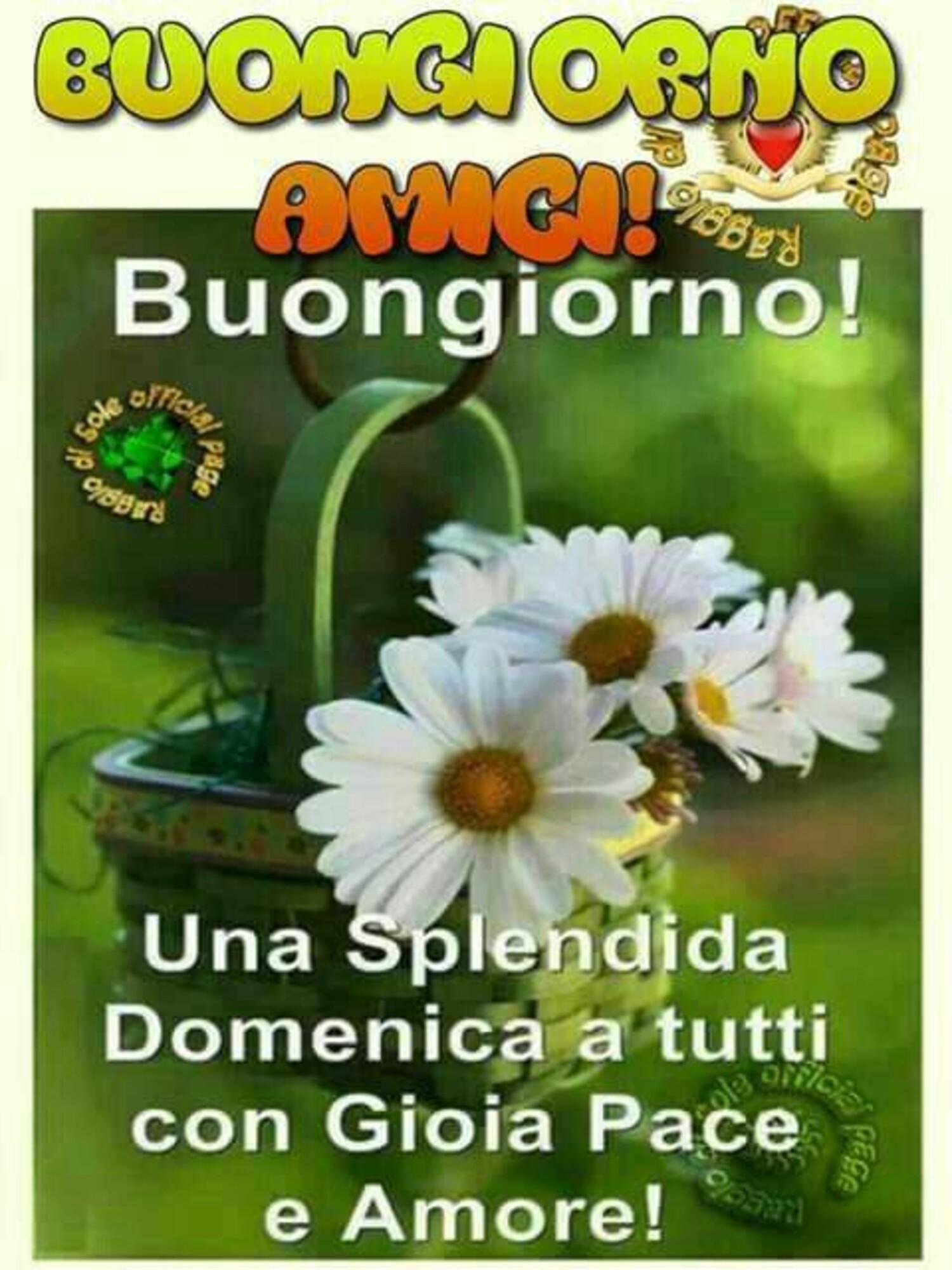 Buongiorno amici buongiorno! Una splendida domenica a tutti con gioia pace e amore