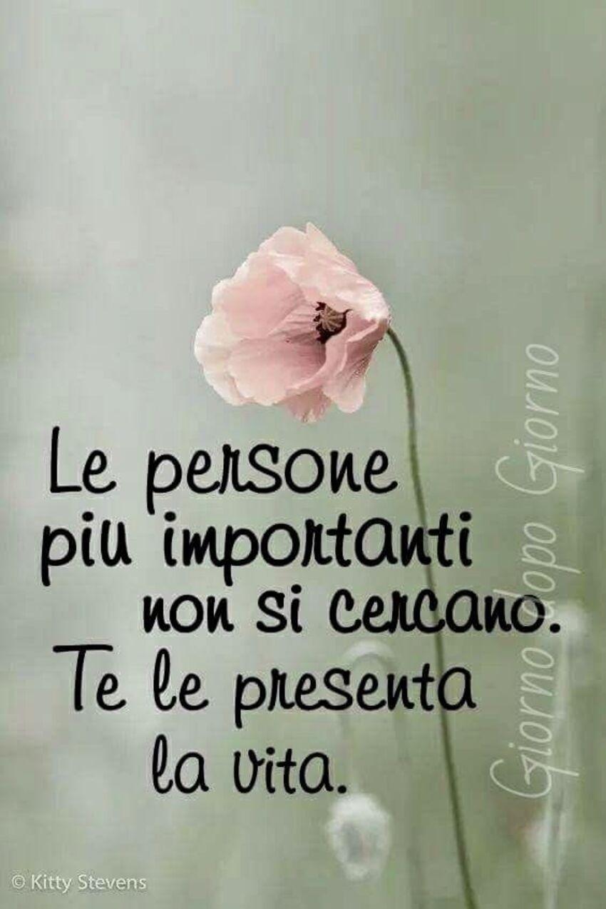 Le persone più importanti non si cercano. Te le presenta la vita.