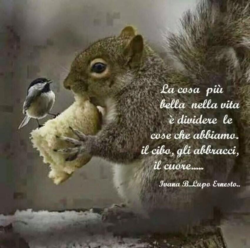 La cosa più bella nella vita è dividere le cose che abbiamo: il cibo, gli abbracci, il cuore...