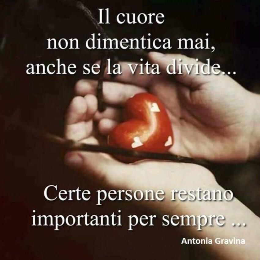 Il cuore non dimentica mai, anche se la vita divide...Certe persone restano importanti per sempre...