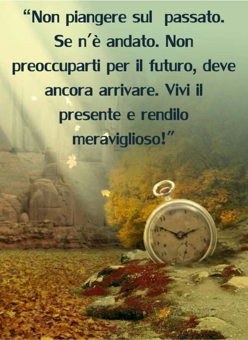 """""""Non piangere sul passato. Se n'è andato e non preoccuparti per il futuro, deve ancora arrivare. vivi il presente e rendilo meraviglioso!"""""""