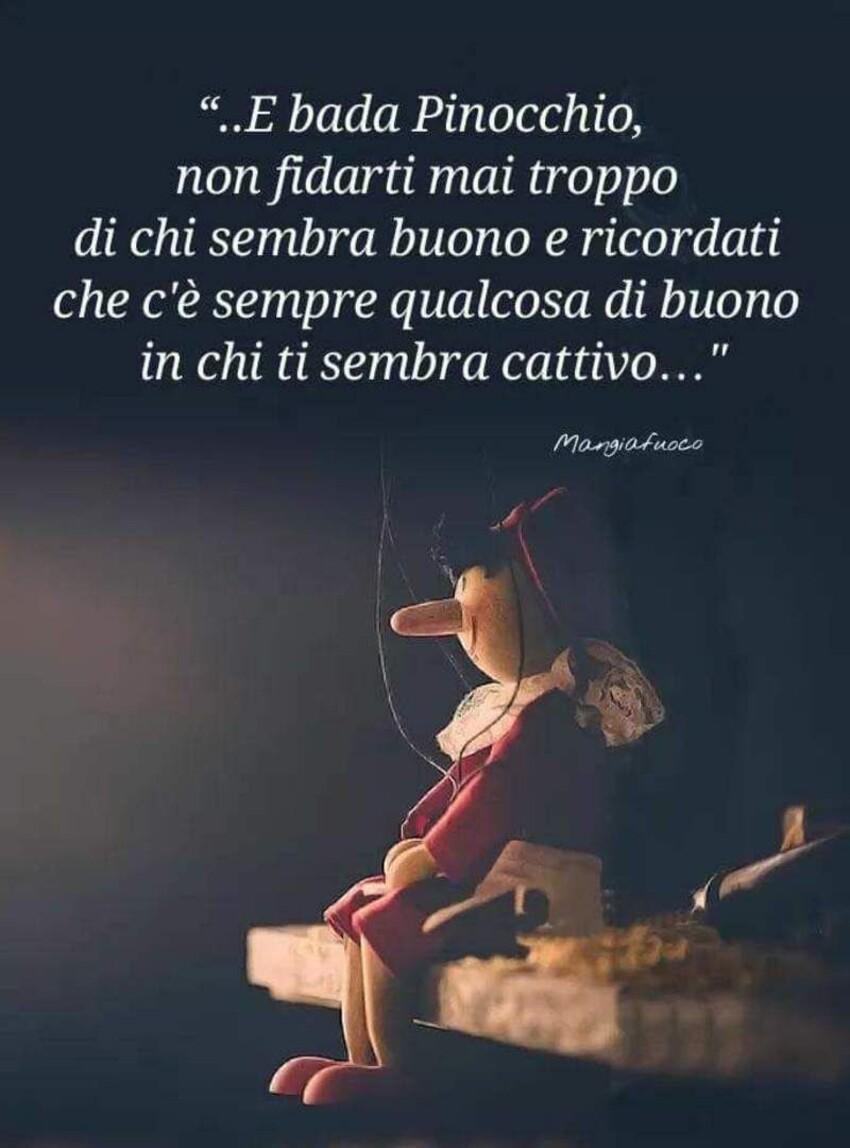 """""""..e bada Pinocchio non fidarti mai troppo di chi sembra buono e ricordalo che c'è sempre qualcosa di buono in chi ti sembra cattivo..."""""""