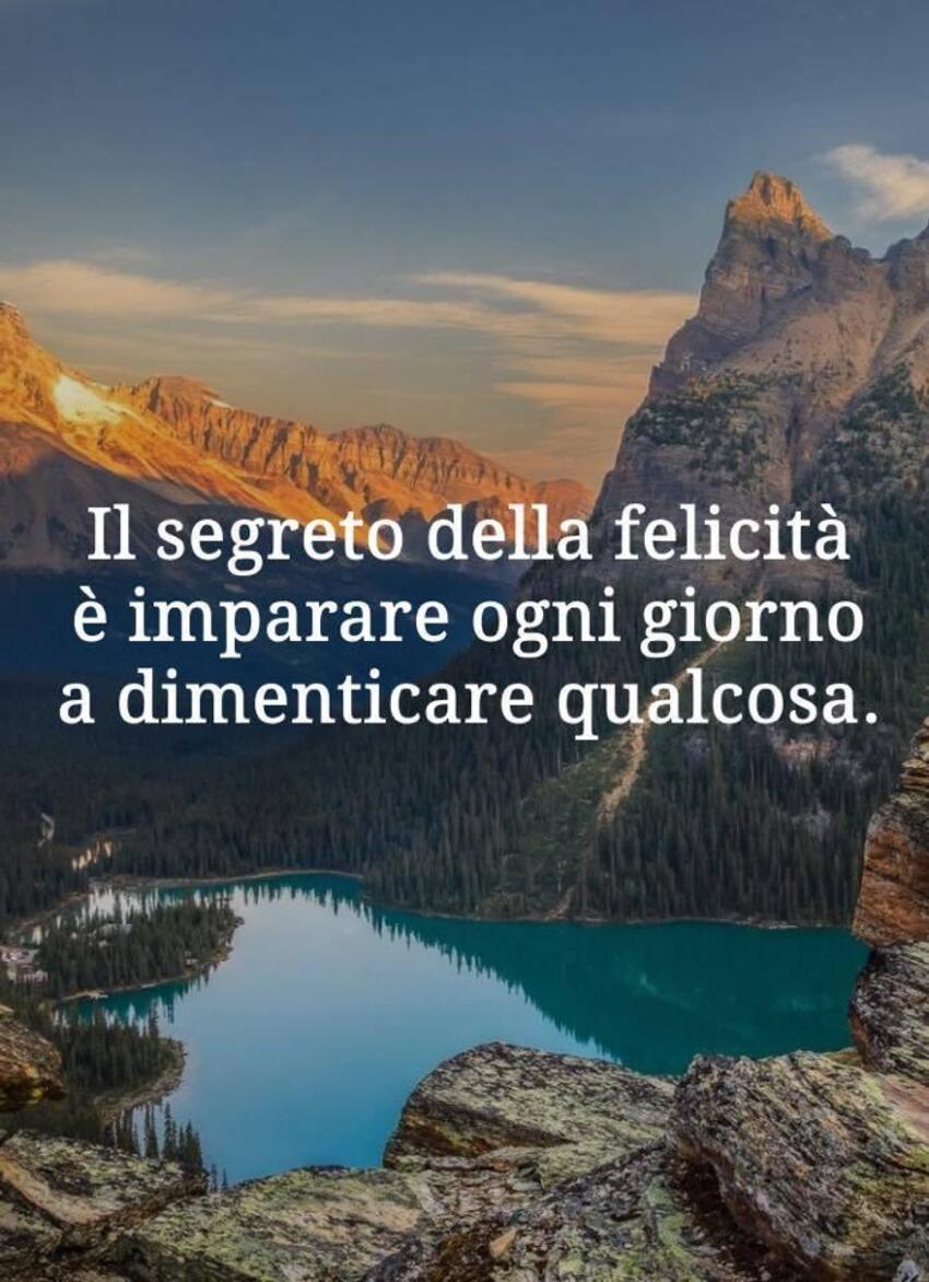 Il segreto della felicità è imparare ogni giorno a dimenticare qualcosa.