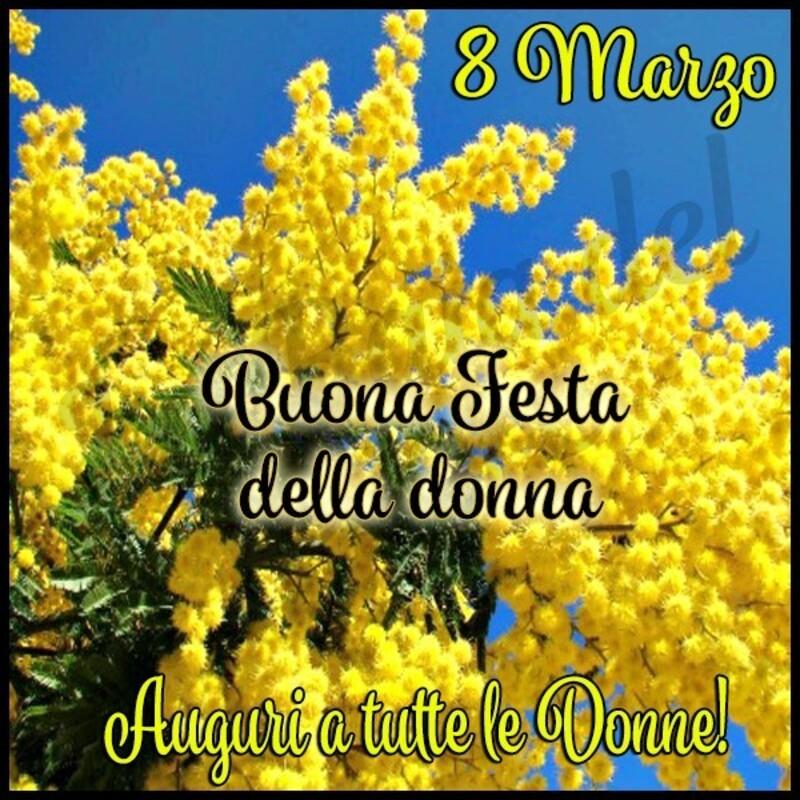 8 Marzo Buona festa della donna Auguri a tutte le donne