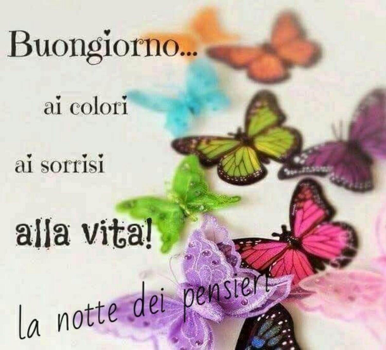 Buongiorno..ai colori, ai sorrisi, alla vita!