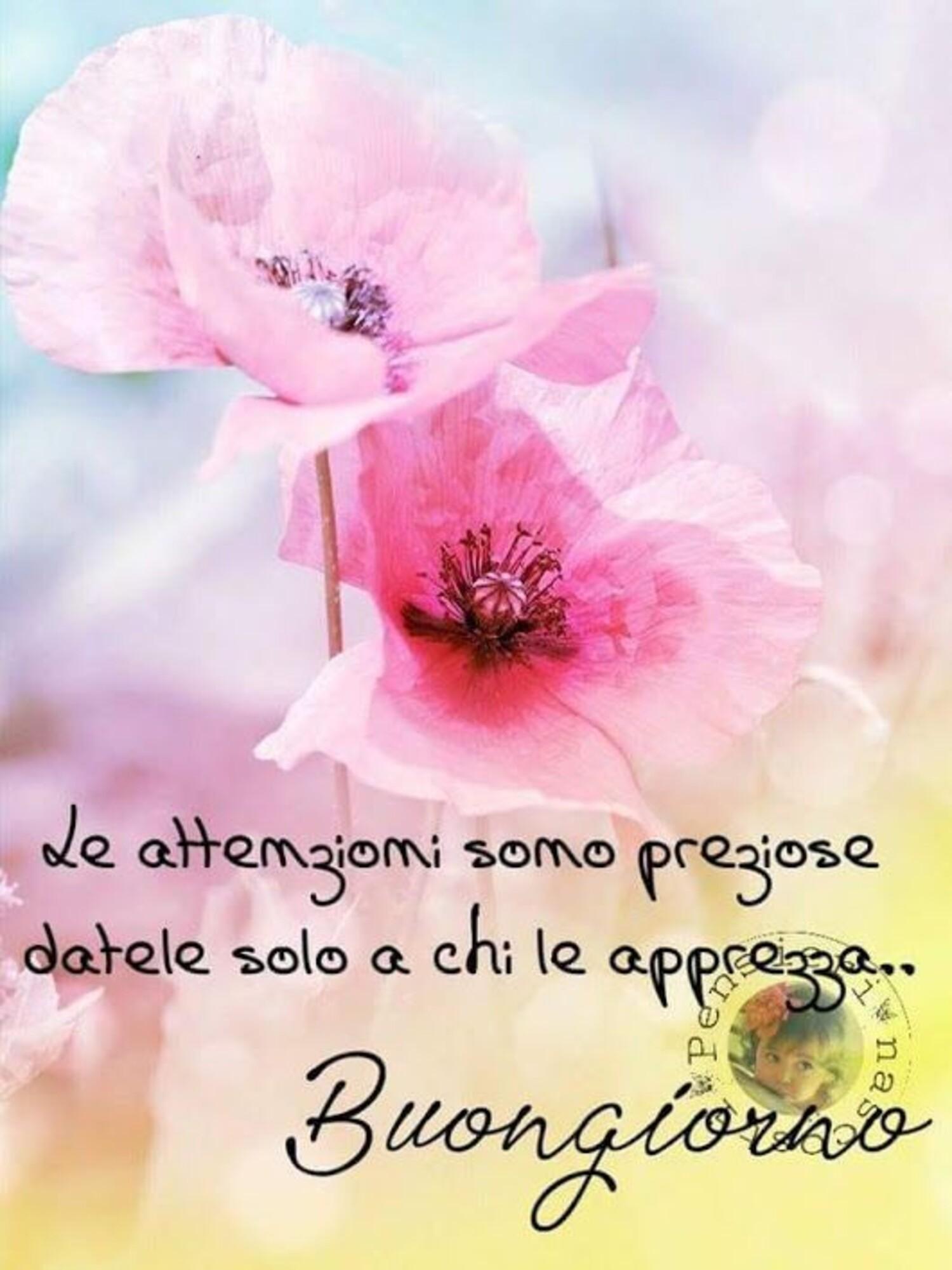 Le attenzioni sono preziose datele solo a chi le apprezza...buongiorno