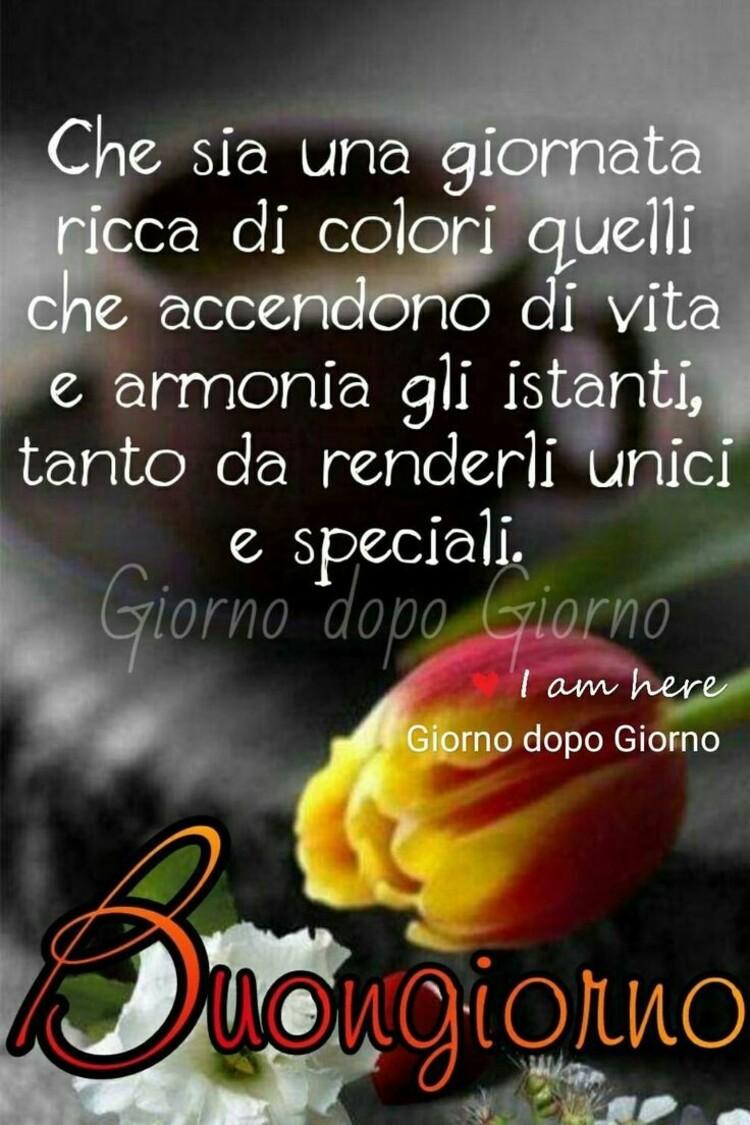 Che sia una giornata ricca di colori quelli che accendono di vitae armonia gli istanti, tanto da renderli unici e speciali. Buongiorno