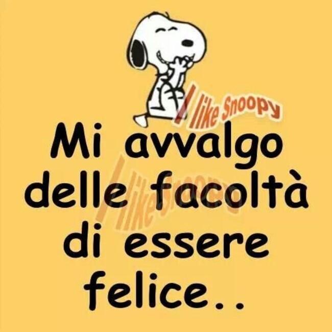 """""""Mi avvalgo delle facoltà di essere felice..."""" - Snoopy"""