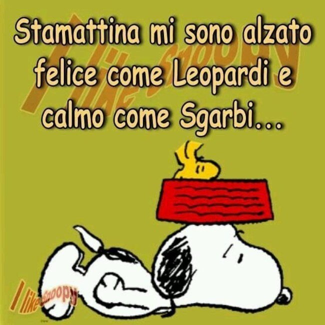 Stamattina mi sono alzato felice come Leopardi  e calmo come Sgarbi...