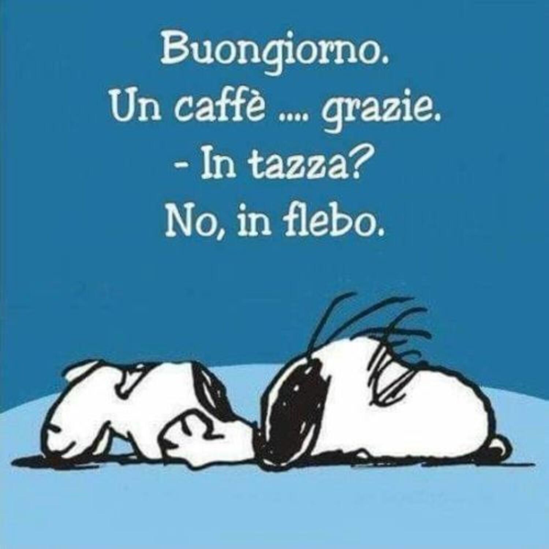 Buongiorno. Un caffè...grazie. - in tazza? No, in flebo