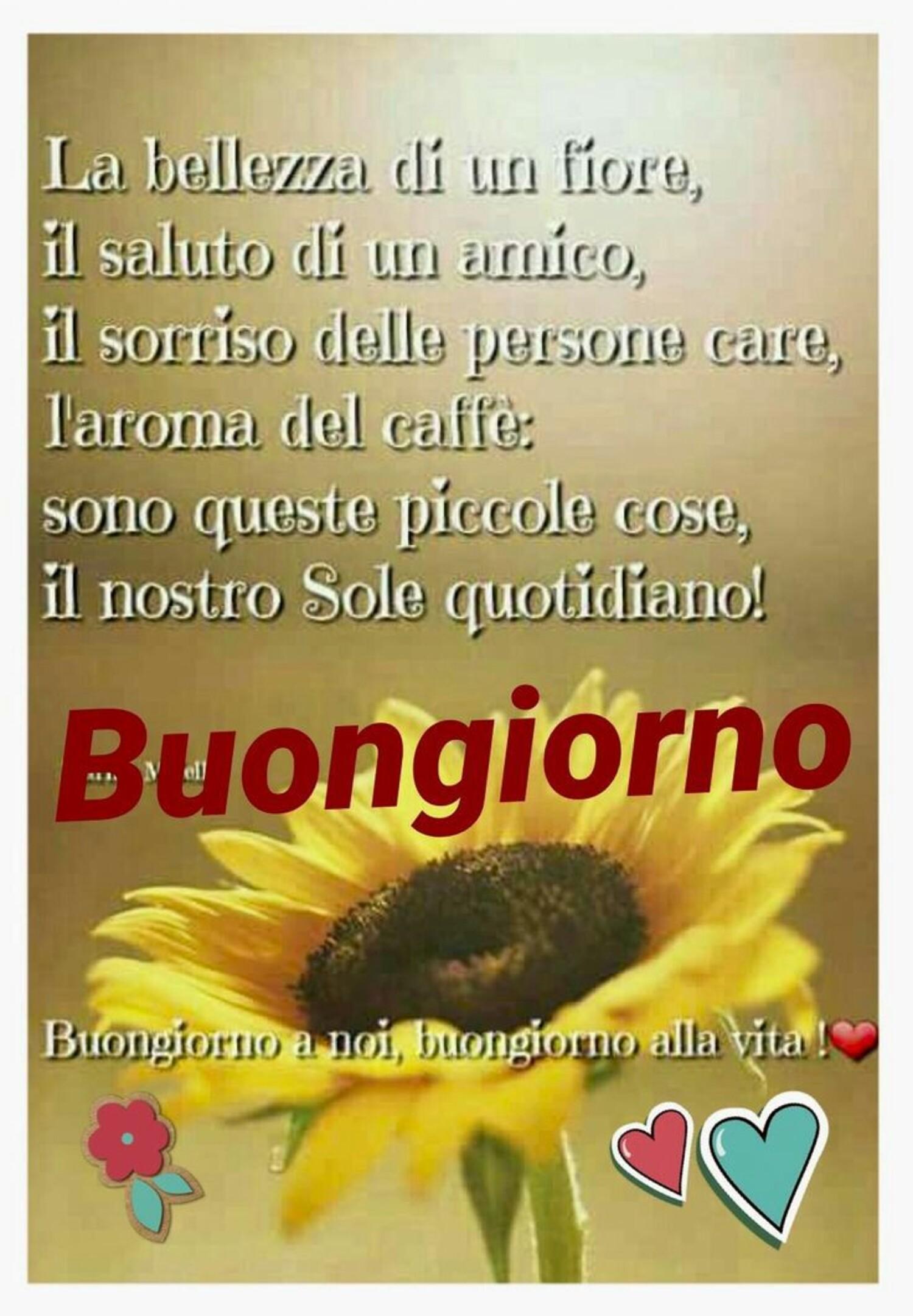 La bellezza di un fiore, il saluto di un amico, il sorriso delle persone care, l'aroma del caffè: Sono queste piccole cose, il nostro Sole quotidiano! Buongiorno