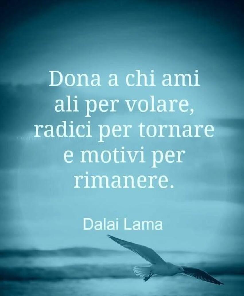 """""""Dona a chi ami ali per volare, radici per tornare e motivi per rimanere."""" - Dalai Lama"""