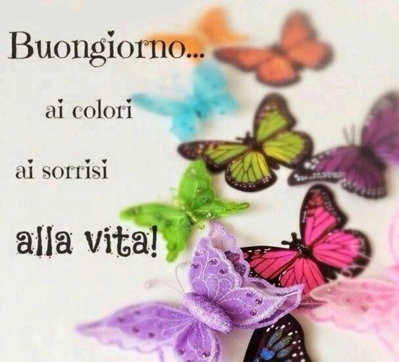 Buongiorno ai colori... ai sorrisi... alla vita !