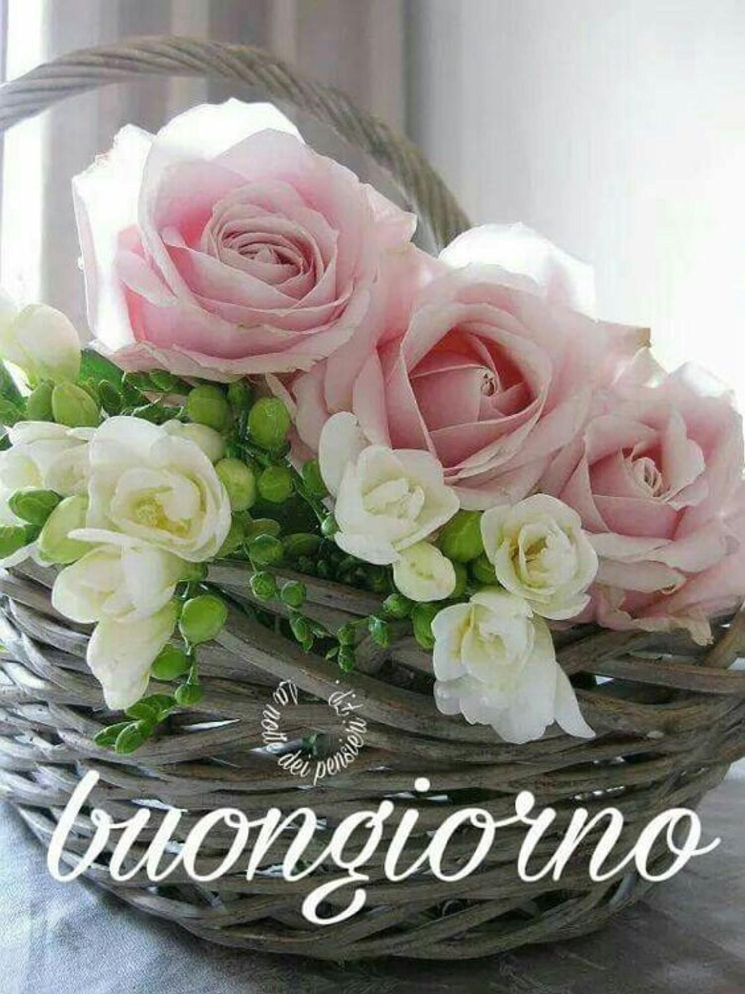 Buongiorno con i fiori