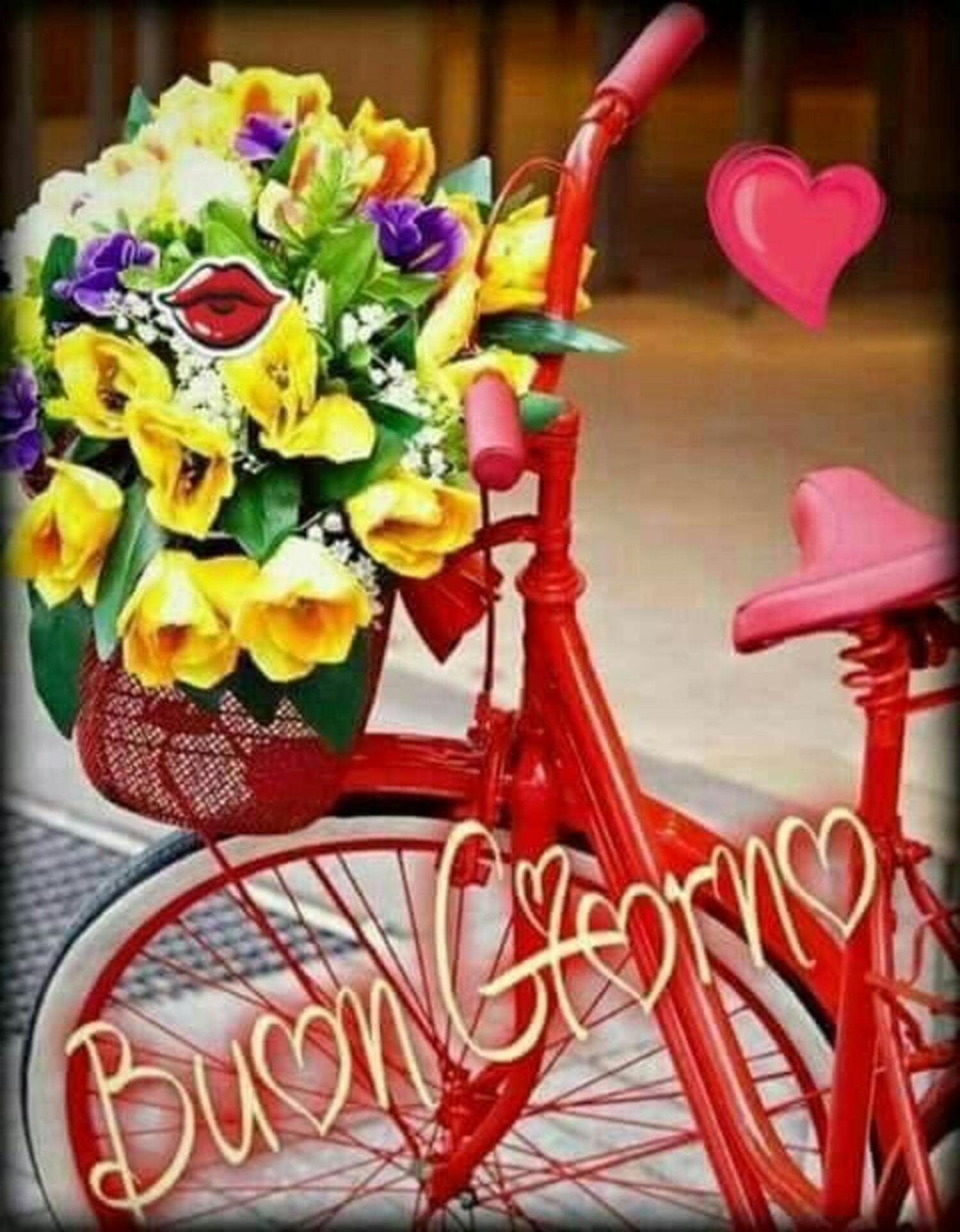 Buon Giorno bicicletta