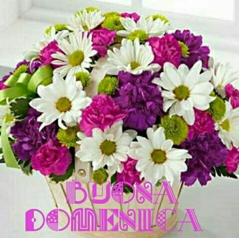 Buona Domenica fiori