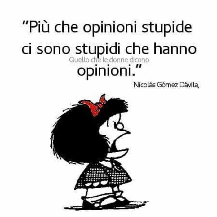 Più che opinioni stupide ci sono stupidi che hanno opinioni.