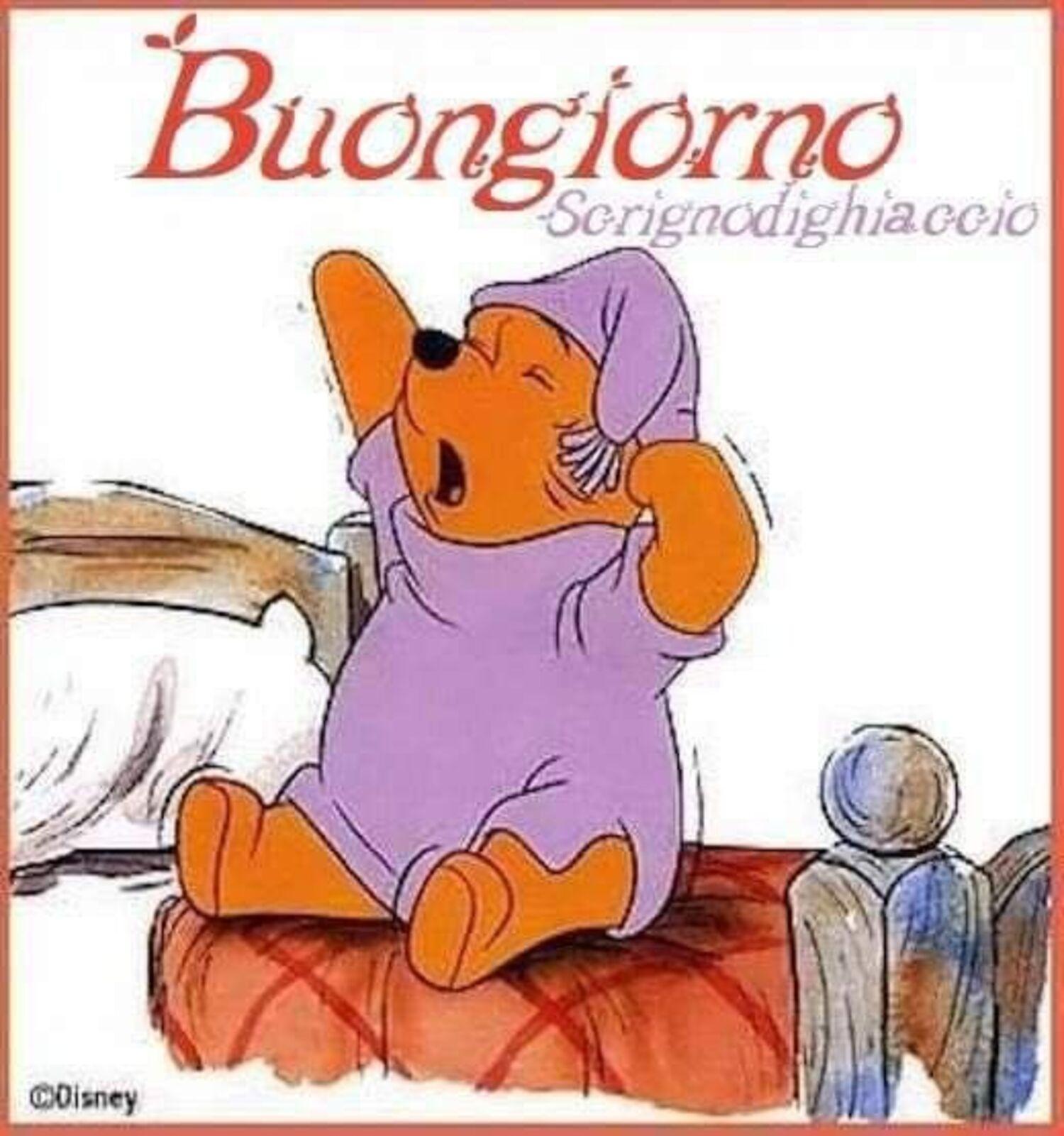 Buongiorno da Winnie The Pooh
